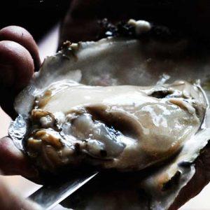 Rebecca De La Torre Review of The Southern Steak & Oyster, Nashville