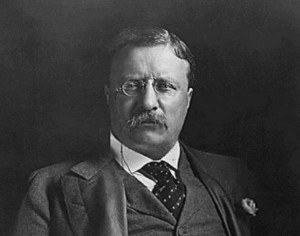 Theodore Roosevelt - It's not the critic who counts